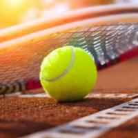 Tennis Lovers